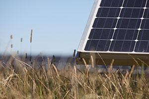 milford haven solar farm 5mw renewable energy
